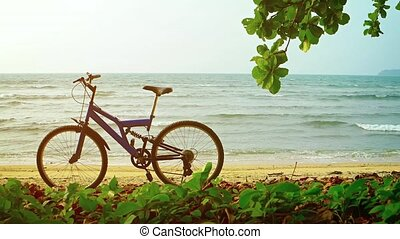 Mountain Bike Parked on a Sandy Tropical Beach. video - Blue...