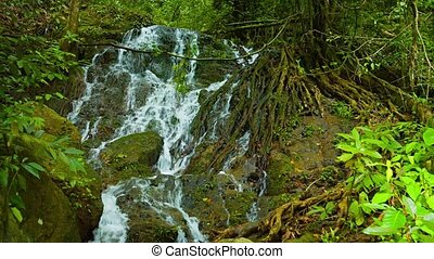 "Natural Waterfall Flows - ""White water tumbles playfully..."