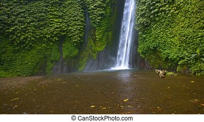 quot;Upward Tilting Shot of a Tropical Wilderness Waterfall,...