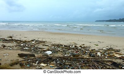 Garbage and Litter on a Sandy Tropical Beach - Sandy...