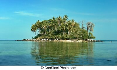 Tiny Tropical Island Paradise at Low Tide - Coconut palms...