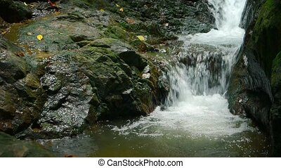 """""""Natural Waterfall Pours Peacefully into a Tropical Pool,..."""
