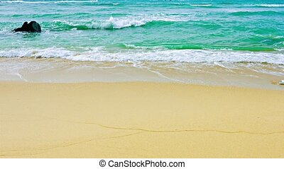 Gentle Tropical Waves on a Sandy Beach - Gentle waves of...
