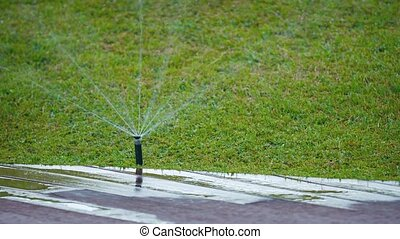 Jets of Water Spraying from a Rotating Sprinkler Head. video