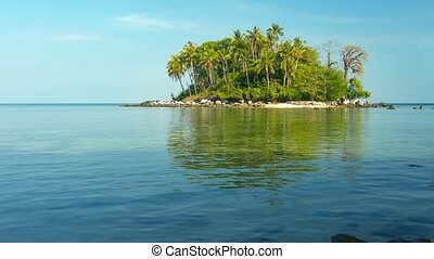 Tiny Tropical Island with Trees and Boulders video - Tiny,...