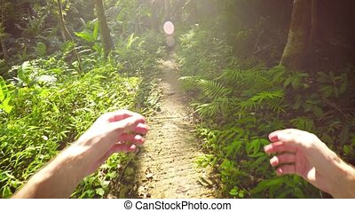 Walking along a Jungle Nature Trail with Swinging Hands. Video