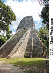 Tikal, Guatemala: Temple V, one of the major pyramids  (57 metres high) at Tikal, the most important archaeological site of the pre-Columbian Maya civilization, and dated to about AD 700, during the reign of Nun Bak Chak, in the Late Classic period.