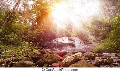 """Golden Sunbeams over Babbling Brook and Natural Waterfall,..."