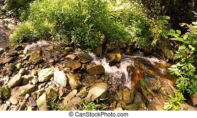 Babbling brook in Nature Area with Sound - Water tumbles...