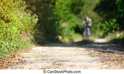 A man riding bike on a forest path - A man riding a bike on...