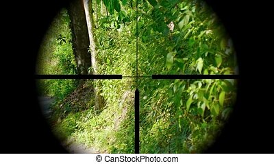 Sniper seeking his prey. A view through a rifle sight. Video...