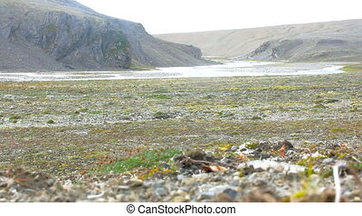 River valley in rocky Arctic desert. Territory atomic test...