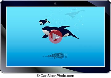Vector illustration of online video on the tablet