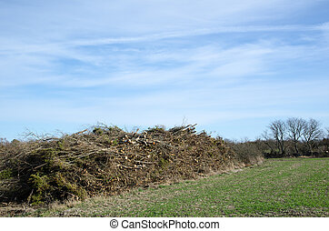 Pile ready for chipping - Pile of branches ready for...