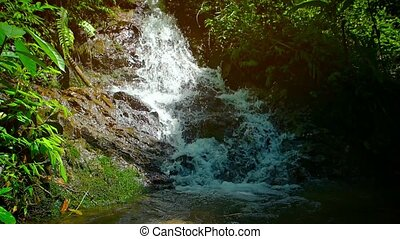 """Waterfall in a Tropical Wilderness, with Sound"" - ""Water..."