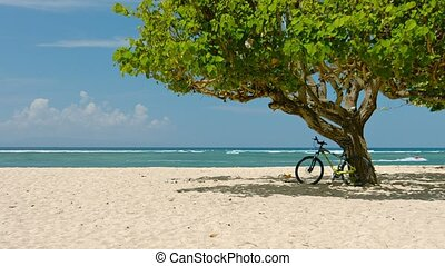 Mountain Bike Parked in the Shade at a Tropical Beach -...