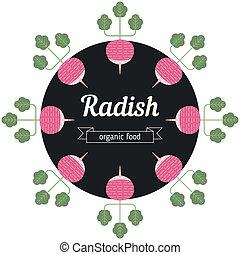 Radish vegetables illustration.