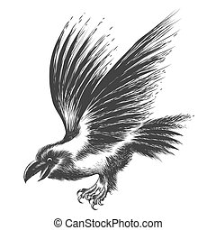 Raven Sketch - Black Raven drawn in sketch style. Isolated...