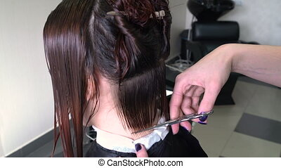 Hairdresser's hands cutting hair. - Stylist with a comb and...
