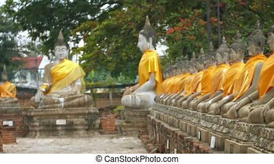Many Buddha Statues outside a Temple in Southeast Asia -...