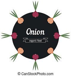 Onion vegetables illustration.