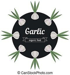 Garlic vegetables illustration.