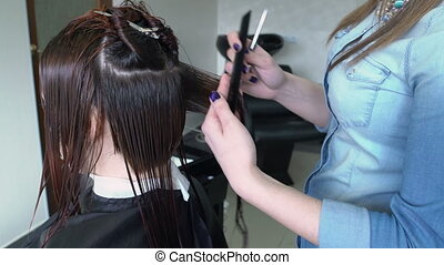 Stylist cutting womans hair - The stylist cuts the hair of a...