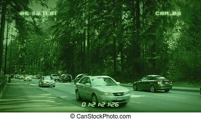 CCTV Cars In Forest
