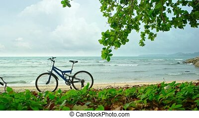Bicycle Parked on a Tropical Beach on a Cloudy Day - Blue...