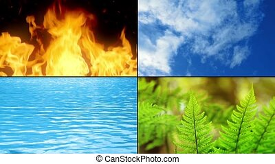 Elements Of Life Montage