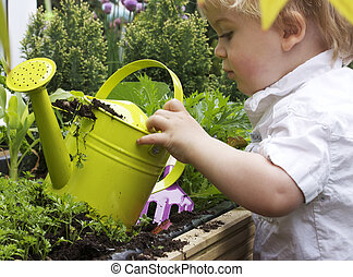 boy and watering can - a 2 year old toddler gardening with...