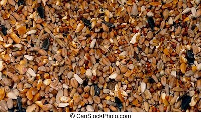 Grain And Seeds Pile Shifting - Mixed grain and seeds...