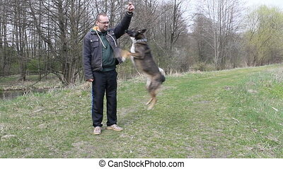 man training a dog on the field