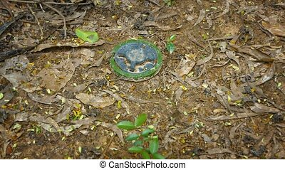 Old Landmine Sitting in Plain Site on the Surface - Old,...