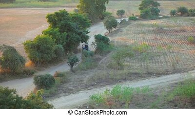 Carts with horse on a rural road in the evening. Myanmar, Bagan.