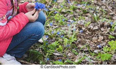 Girl picking flowers in the meadow - Girl collects beautiful...
