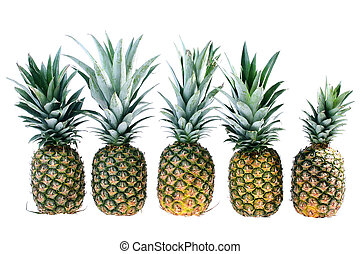 Five pineapples are located in one number on a white...