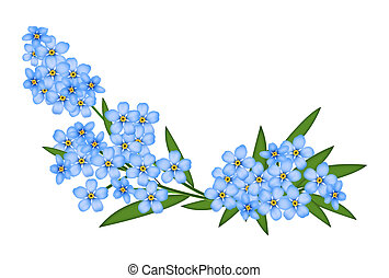 Forget-me-not - Illustrated blue forget-me-not isolated on a...