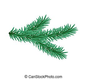 Green lush spruce branch Fir branches Isolated illustration...