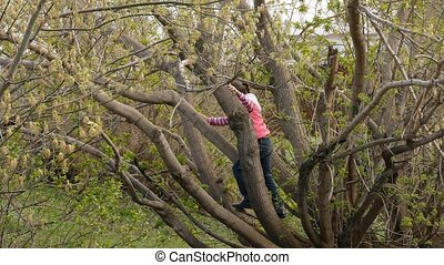 teen girl climbed a tree - teen girl climbed a tree