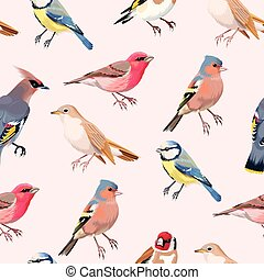 Colorful songbirds seamless - Vintage colorful beautiful...