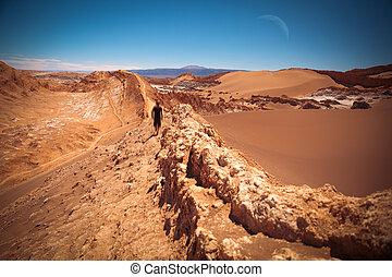 Valle de la Luna Moon Valley close to San Pedro de Atacama,...