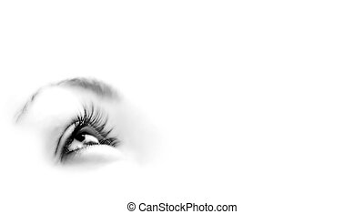 Women\'s eye - looking forward.Isolated on white. - Women\'s...