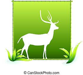 Deer in Bamboo Frame