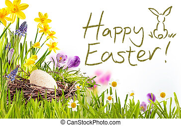 Happy Easter text with grass and egg border