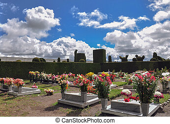 Topiary Cemetery From Tulcan, Carchi, Ecuador - Topiary...