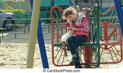 girl teen stroking playground cat on outdoors - girl teen...