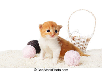 Cute red kitten with yarn woolen balls isolated - Red orange...