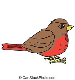 robin bird cartoon illustration