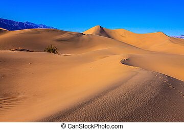 Sand Dunes - Mesquite Flat Sand Dunes Bright sunny morning...
